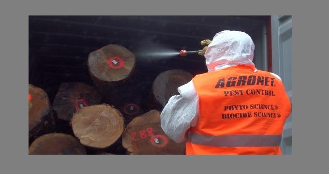 Le Havre veut relancer l'exportation du bois