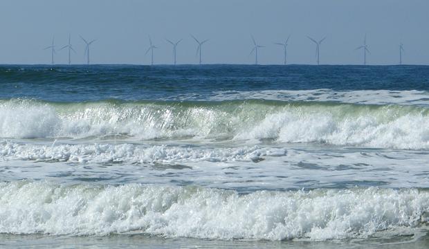 Eoliennes en mer et activité touristique : des témoignages pour informer