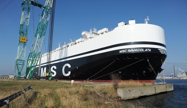 Le MSC Immacolata inaugure au Havre le nouveau service roulier de MSC vers l'Afrique