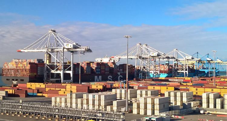 MSC MIRJAM, en opération au terminal TN de Port 2000