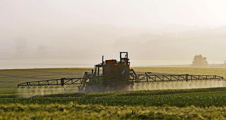 La Région lance une expérimentation pour tester des alternatives au glyphosate d'ici 2021