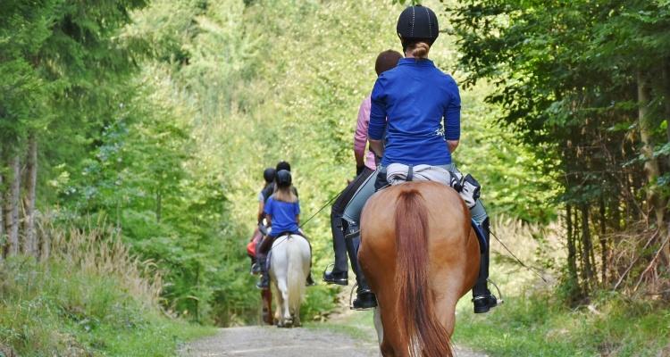 Lancement des travaux de l'itinéraire équestre régional du Pays d'Auge à la Seine, de Falaise à Jumièges