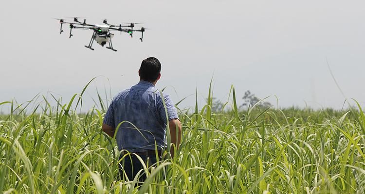 Fast Forward Agrifood : Le nouvel accélérateur pour les startups agri et agro