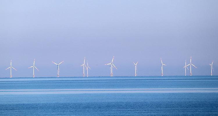 Eolien en mer : les CCI mobilisées pour accélérer son développement en Normandie