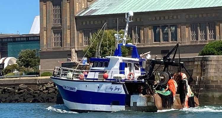 « Grâce à la CCI, j'ai obtenu mon PGE ! » : Jonathan Burnel, patron-pêcheur dans la Manche