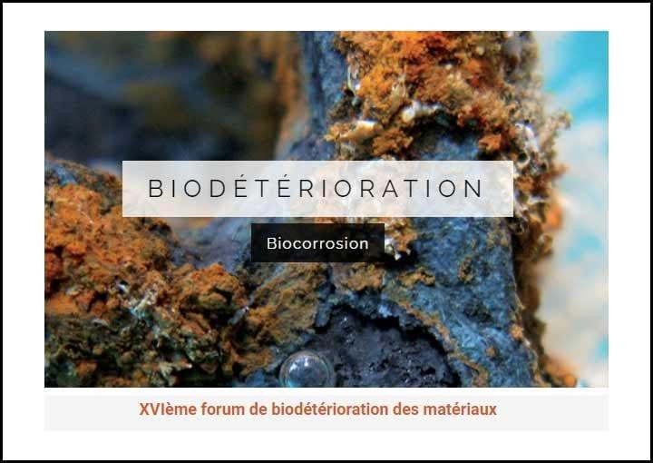 XVIème Forum Biodétérioration des Matériaux 21-22 octobre 2021